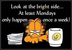 Garfield and I hate Mondays – project me day 213