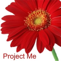 How to tell Your Project Me Story